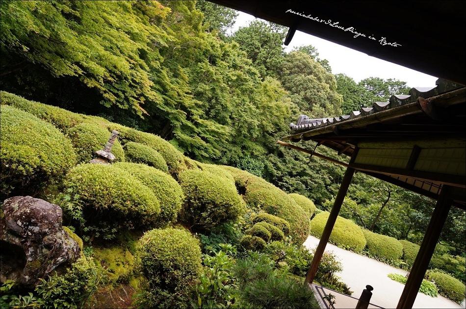 13庭園2