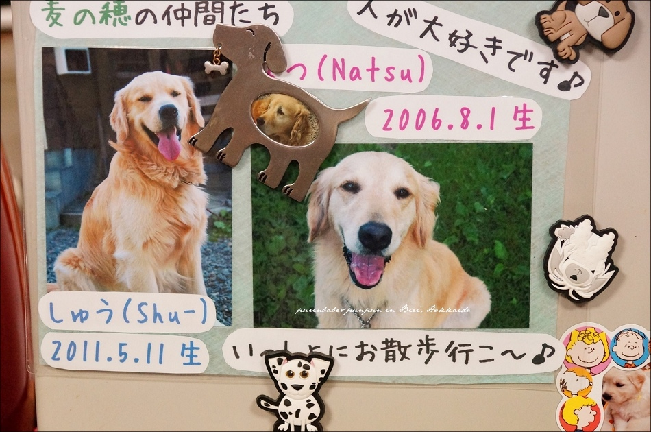 5Shu與Natsu
