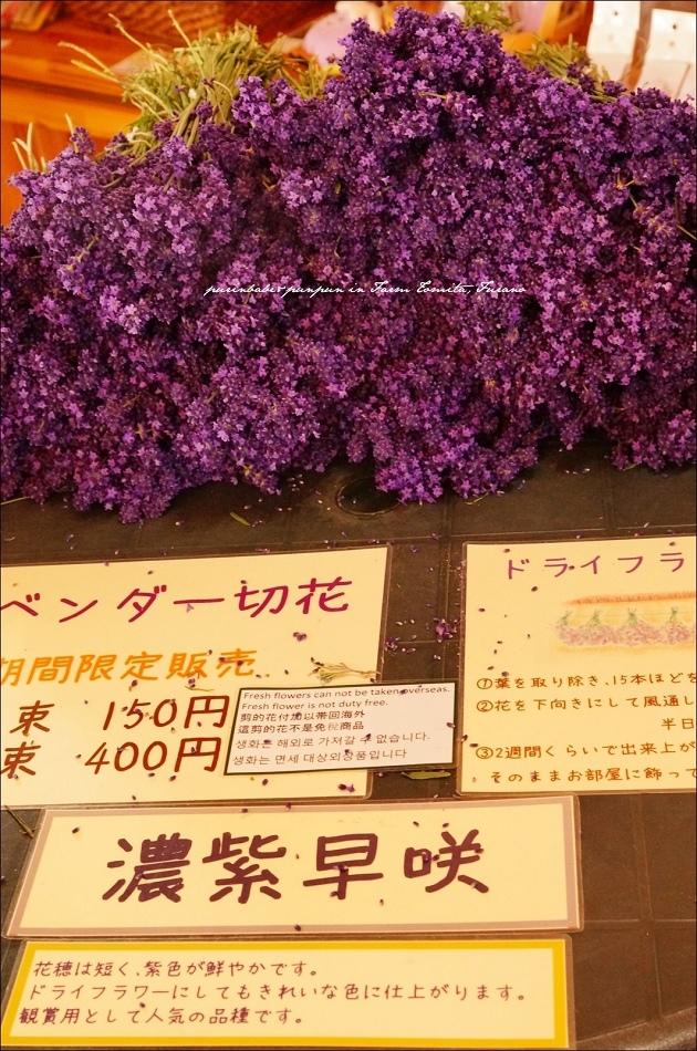 12薰衣草花束