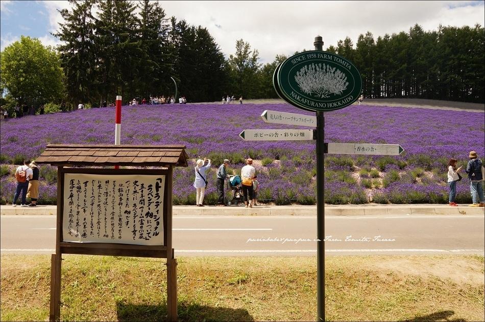 8富田農場入口