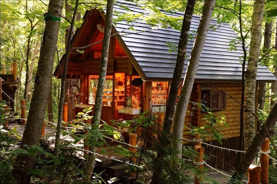 8精靈森林的露台4