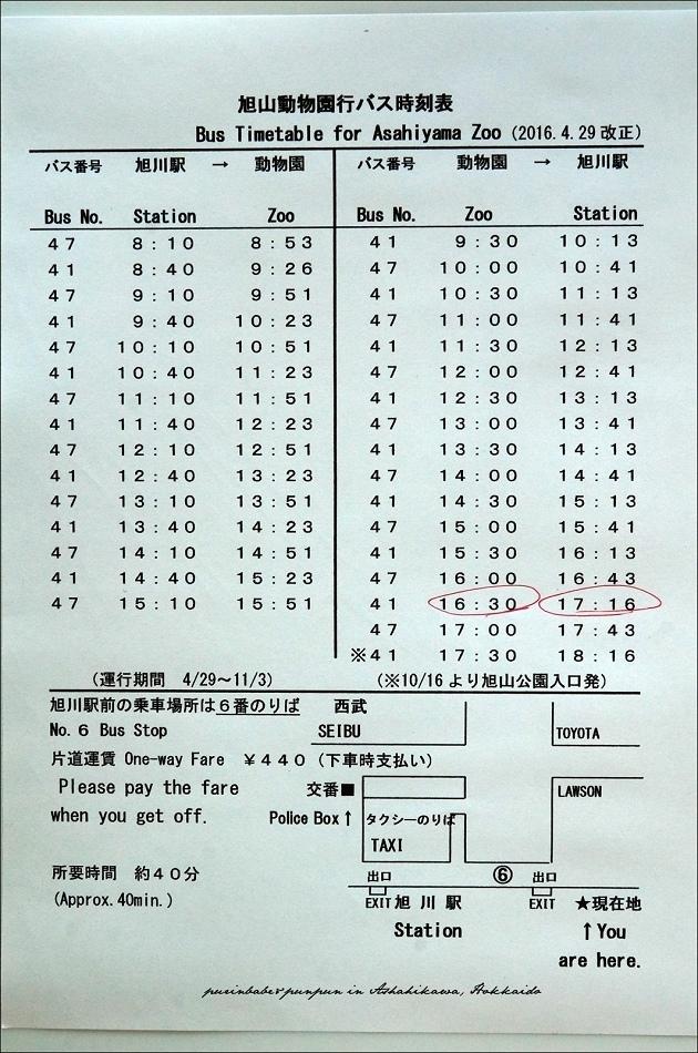 6旭山動物園巴士時刻表
