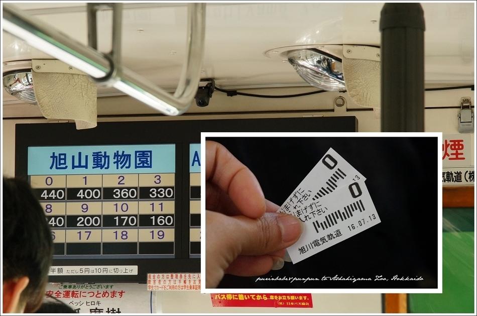 8旭川車站到旭山動物園440日圓
