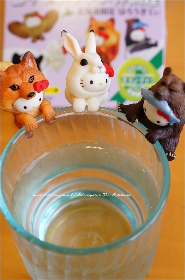 43Hello Kitty變身動物北海道限定版