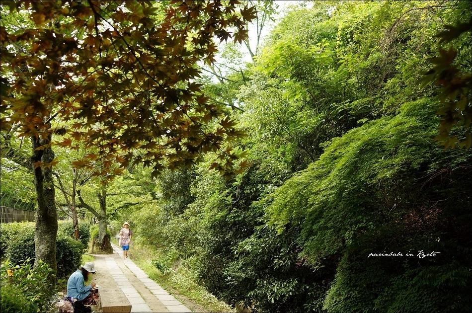 17接近熊野若王子神社2