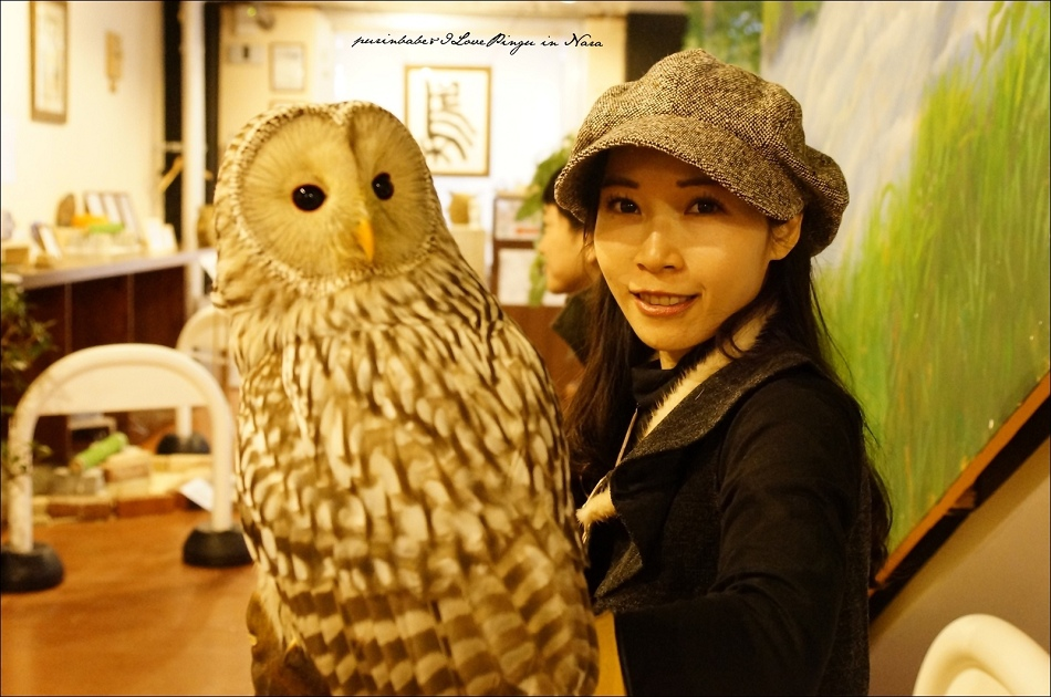 19奈良貓頭鷹咖啡