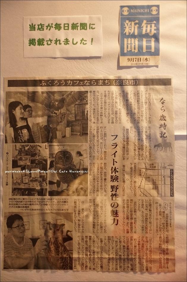 7新聞報導