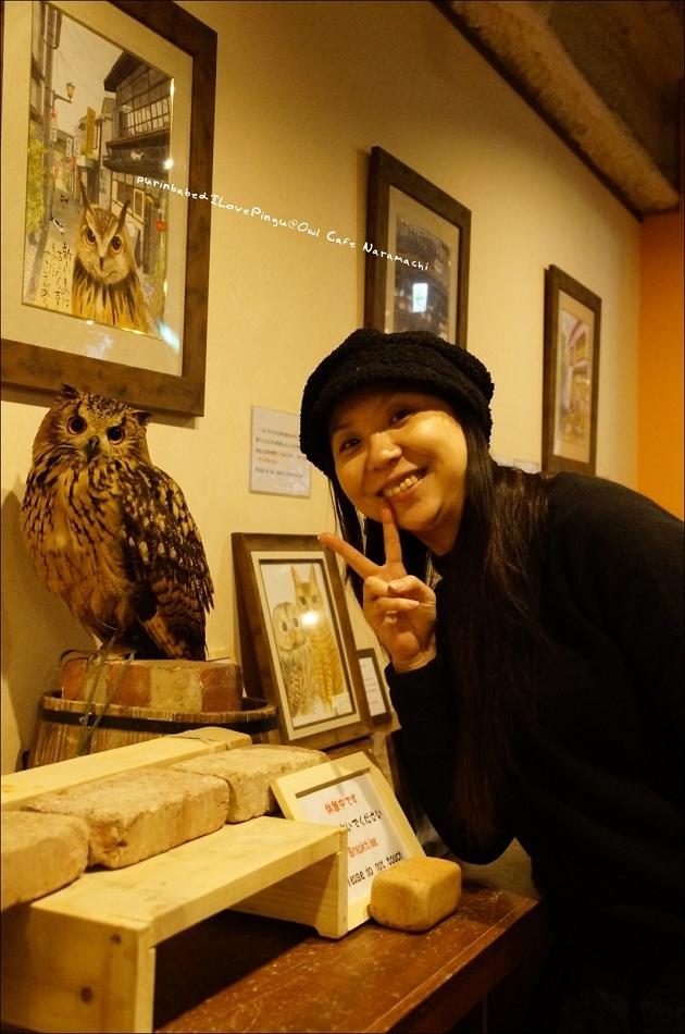 28奈良町貓頭鷹咖啡一隅4