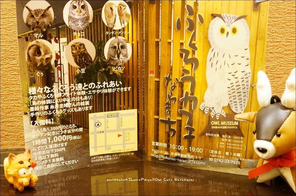 30奈良町貓頭鷹咖啡資訊
