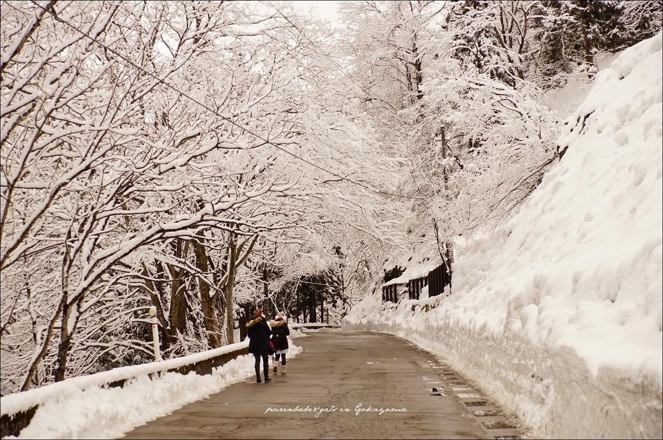 6雪廊道1