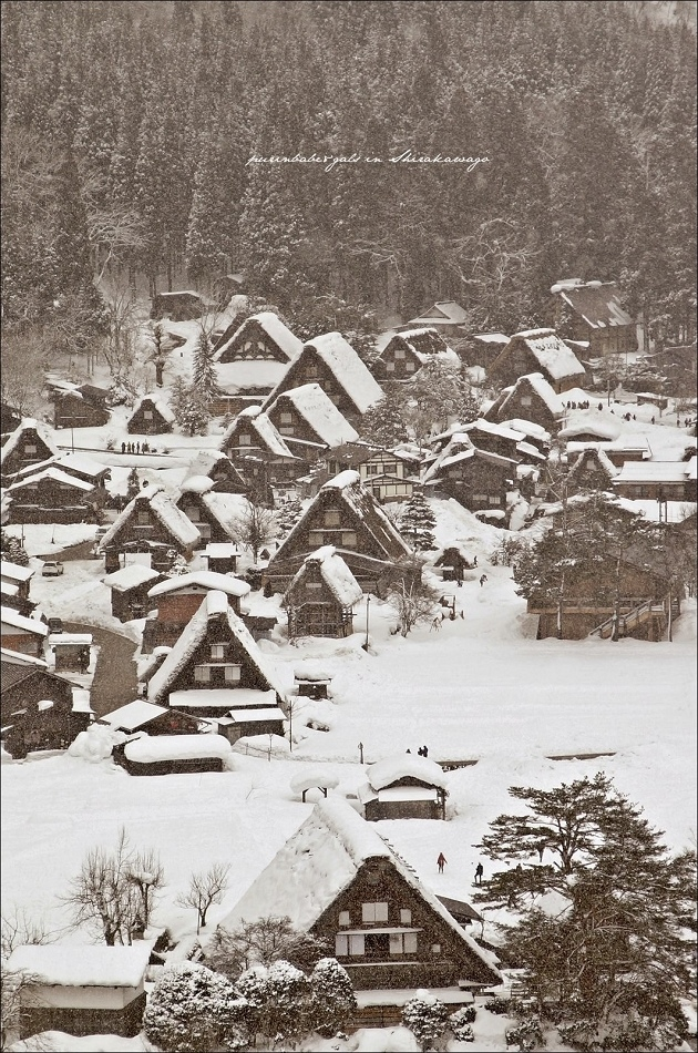 38下雪2