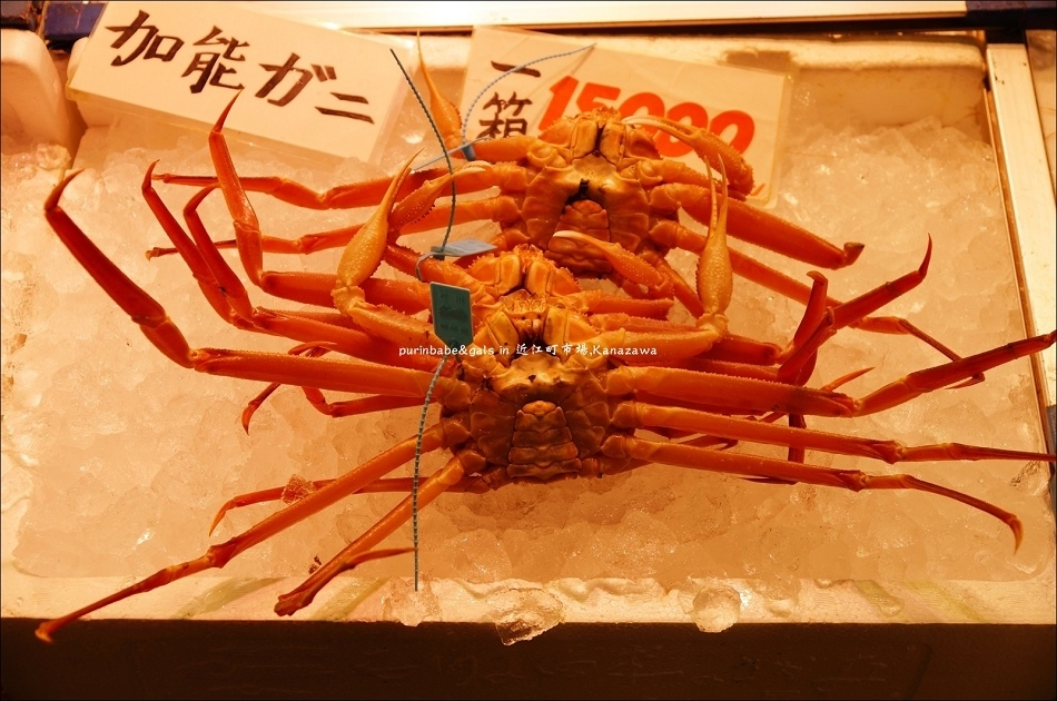 14活螃蟹2
