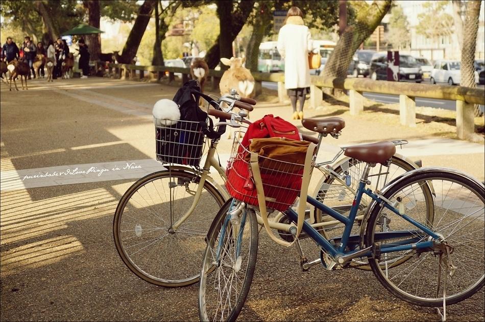 1自行車奈良遊