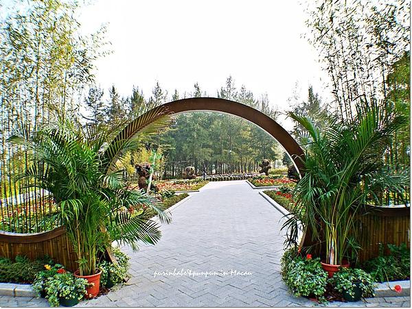 10熊貓花園.jpg