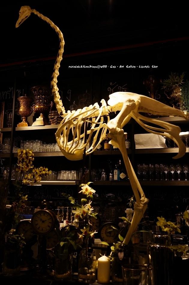 13鴕鳥骨骼