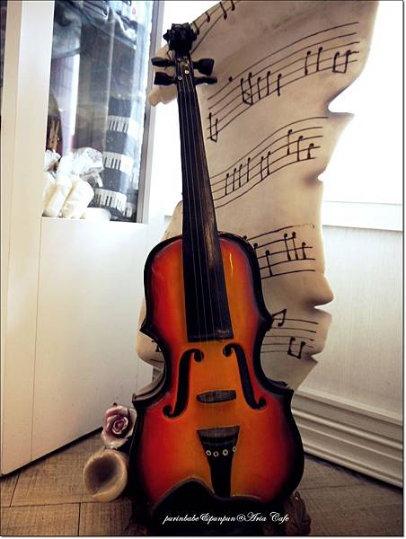 6小提琴.JPG