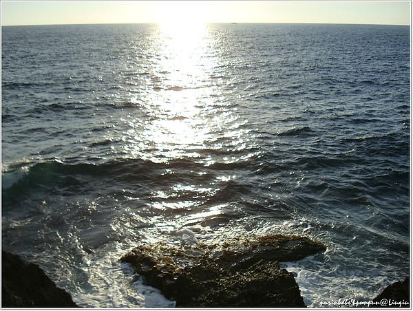 25海洋1.jpg