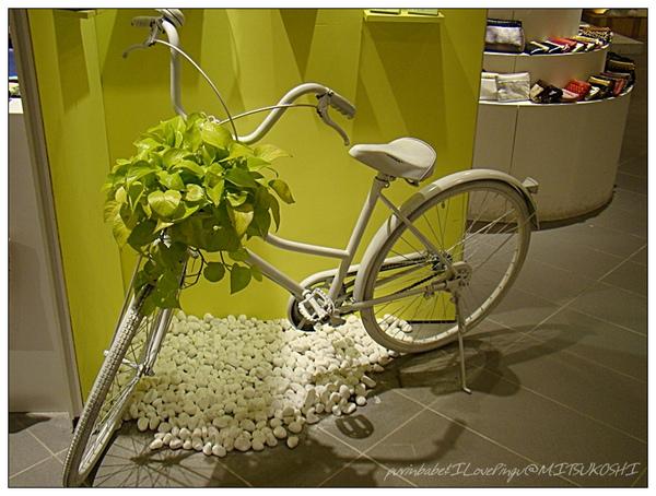 9腳踏車.jpg