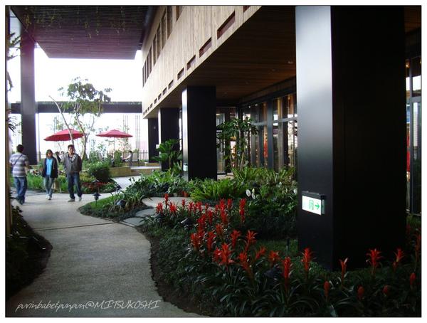 19花果園1.jpg