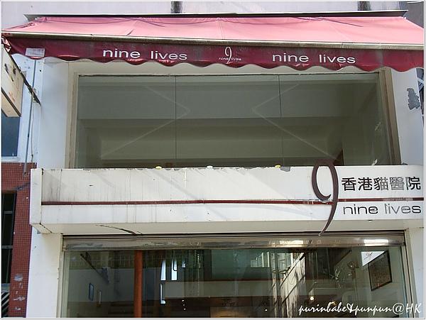 14貓醫院.JPG