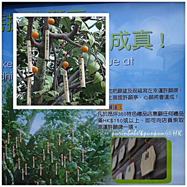 15許願樹說明.jpg