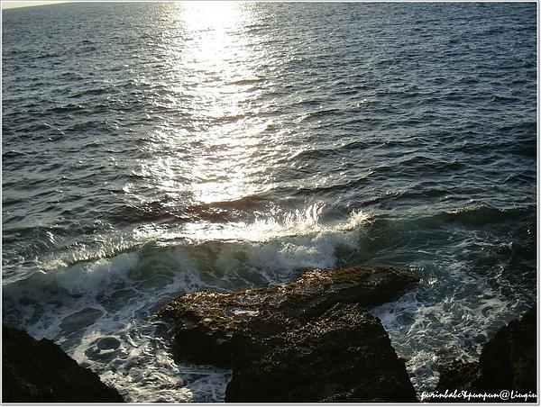 26海洋2.jpg