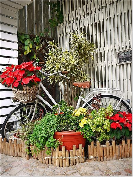 4自行車.jpg