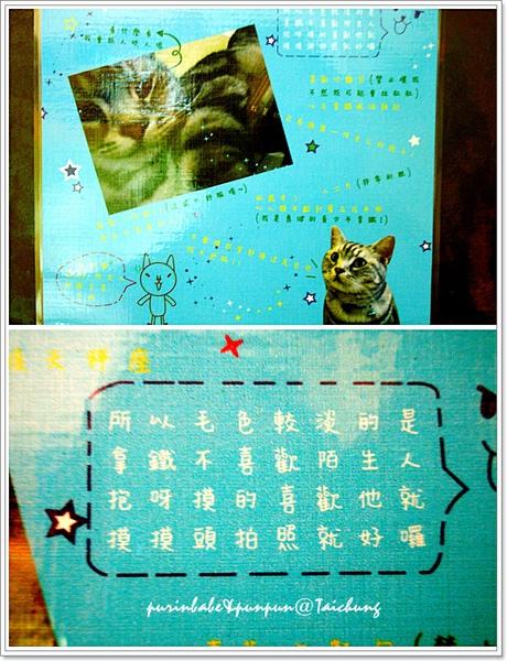 25貓咪說明.jpg