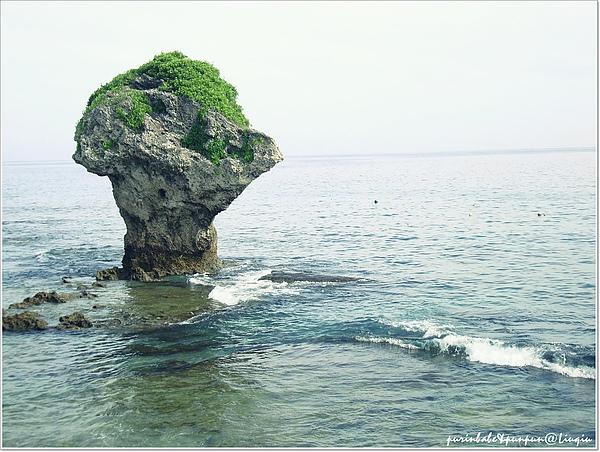 2花瓶岩海水.jpg