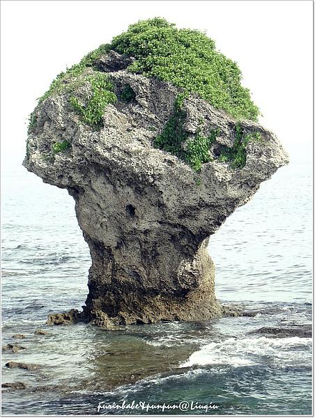 1花瓶岩.jpg