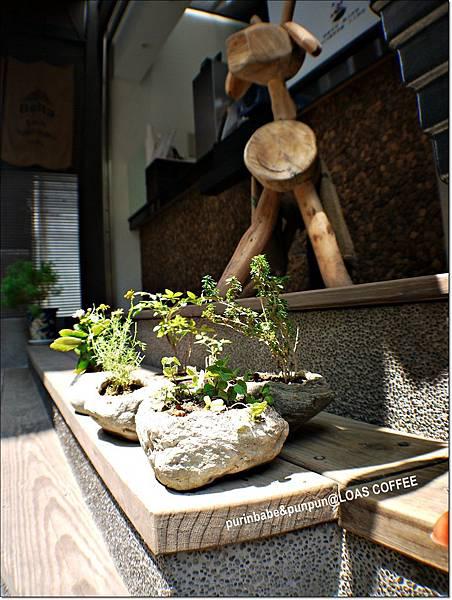 9盆栽.JPG