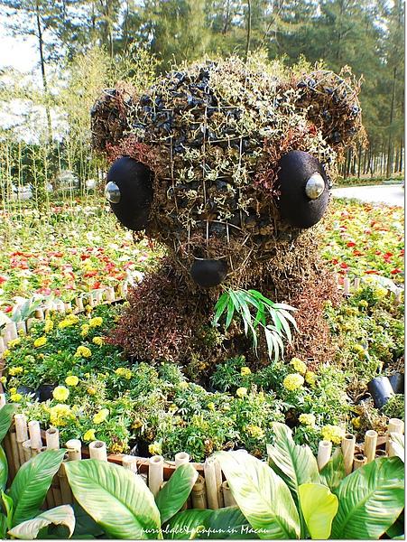 12熊貓2.jpg