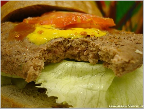 19漢堡斷面.jpg