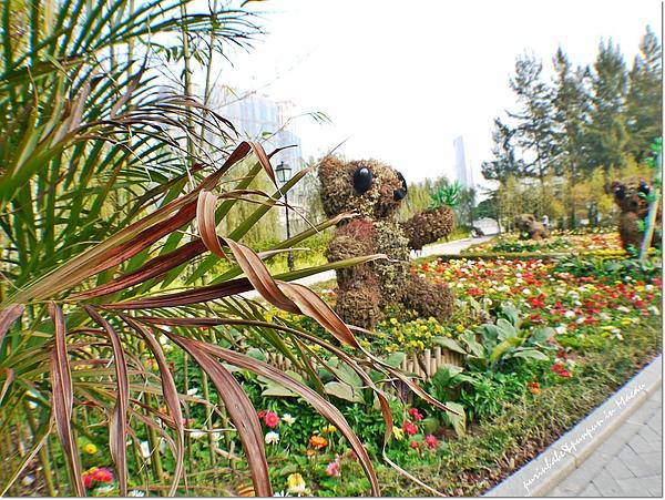 11熊貓.jpg