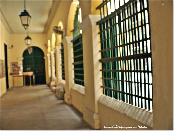 14黃牆綠窗.jpg
