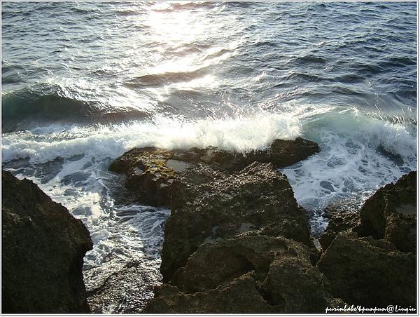 27海洋3.jpg