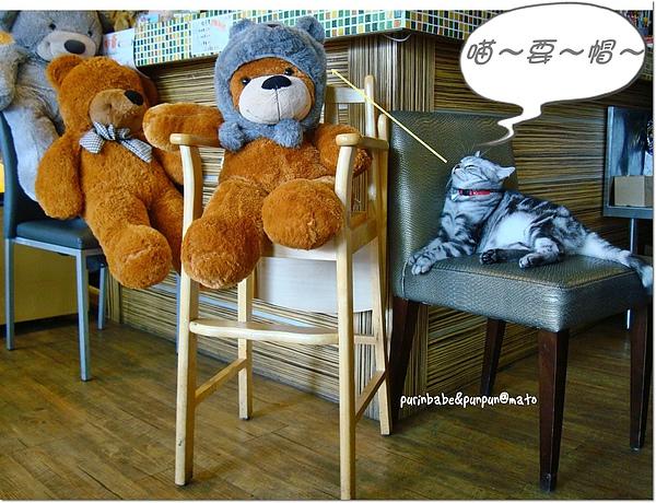 16熊與貓.jpg