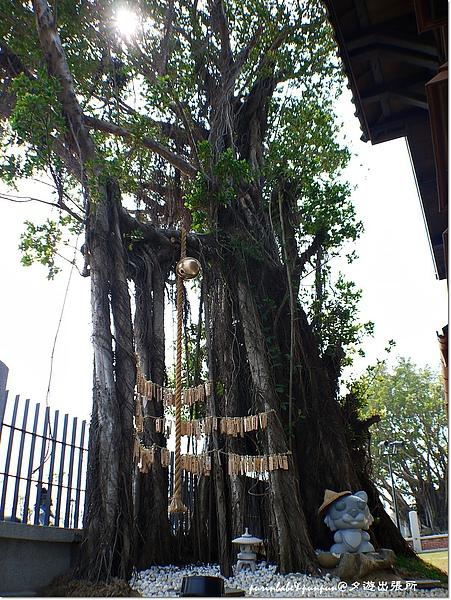 4許願樹.JPG