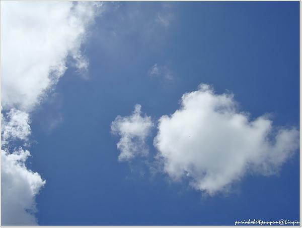 17藍天.jpg
