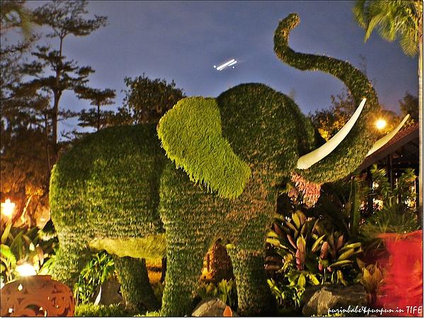 9大象.jpg