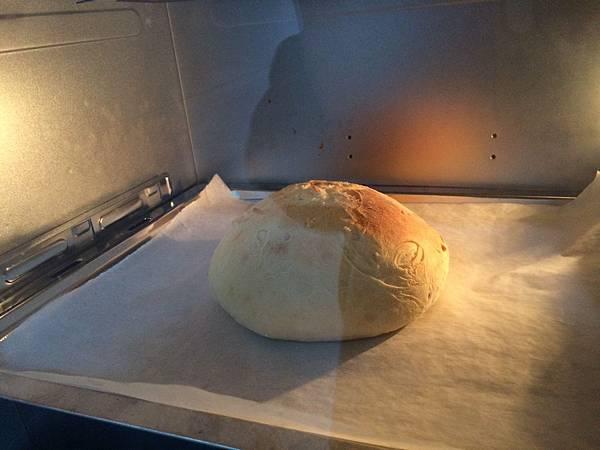 【亂煮】免揉麵包 - 蔓越莓歐克麵包