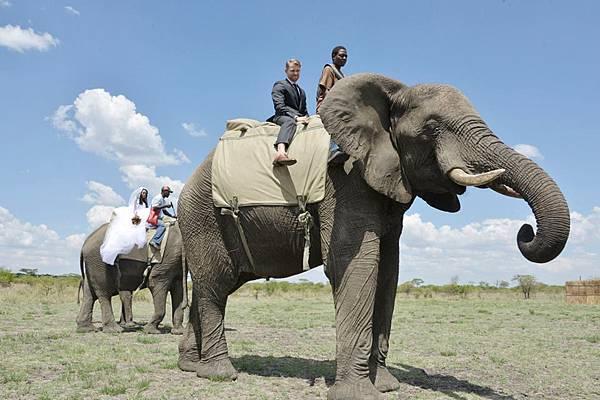 新郎和新娘各坐不同的大象