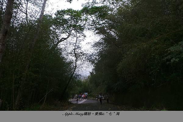 照片 (70).JPG