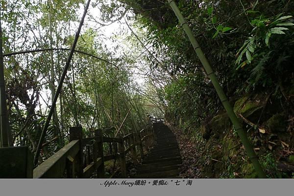 照片 (39).JPG