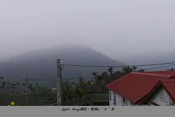 照片 (45).JPG