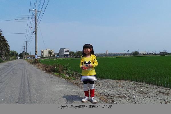 照片 (48).JPG