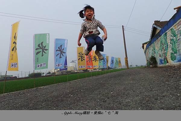 照片 (31).JPG