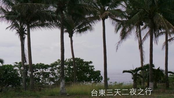 金樽陸連島:<台東三天二夜之旅>口袋名單中>遊記六~都蘭國小>金樽遊憩區