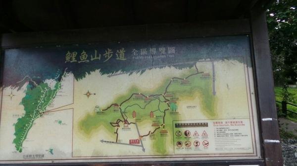 鯉魚山:<台東三天二夜之旅>口袋名單中>遊記三~鯉魚山