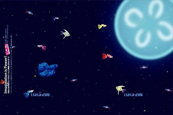 20150511Tropical Universe